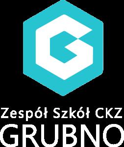 s_logo_grubno_bialy_flat